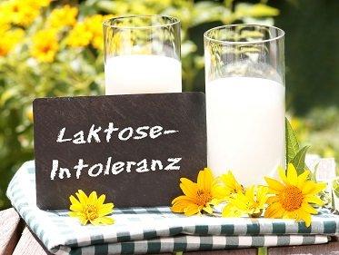 Wie wirken Probiotika bei Laktoseintoleranz?