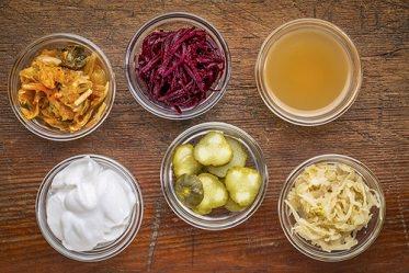 Die Wirkung von Probiotika auf die Darmflora